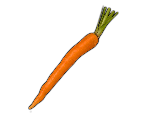 VEGETABLES CARROT Learn about